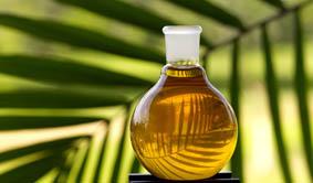 Palm Oil polyols