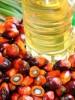 palm oil polyol